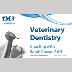 Vet Dentistry for Vet Nurses - 2 - Charting