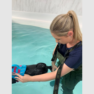 An Introduction to Hydrotherapy
